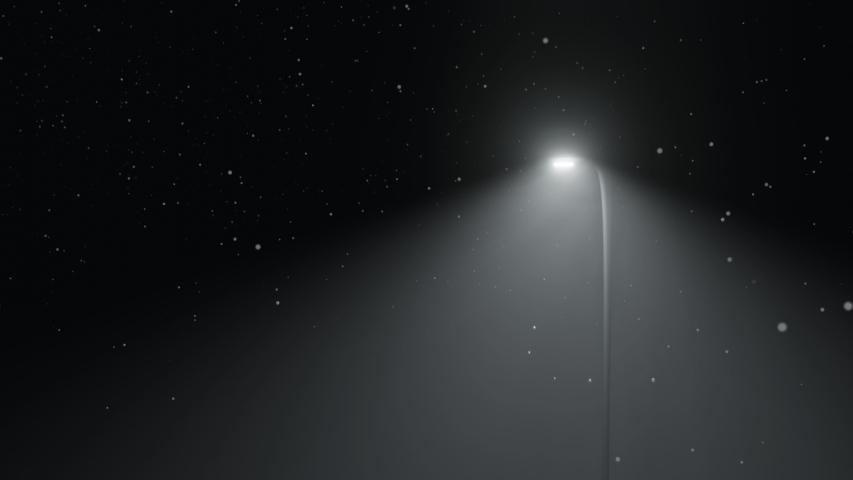 Snow fall on street at night near lamp post. Perfect CG seamless loop | Shutterstock HD Video #1053469247