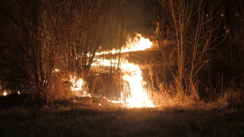 Volunteer lights field for controlled burn of grass in dry season. Wildfire prevention   Shutterstock HD Video #1053473939