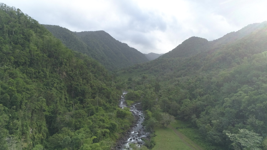 Nice view of the jungle in the heart of the Guadeloupe.
