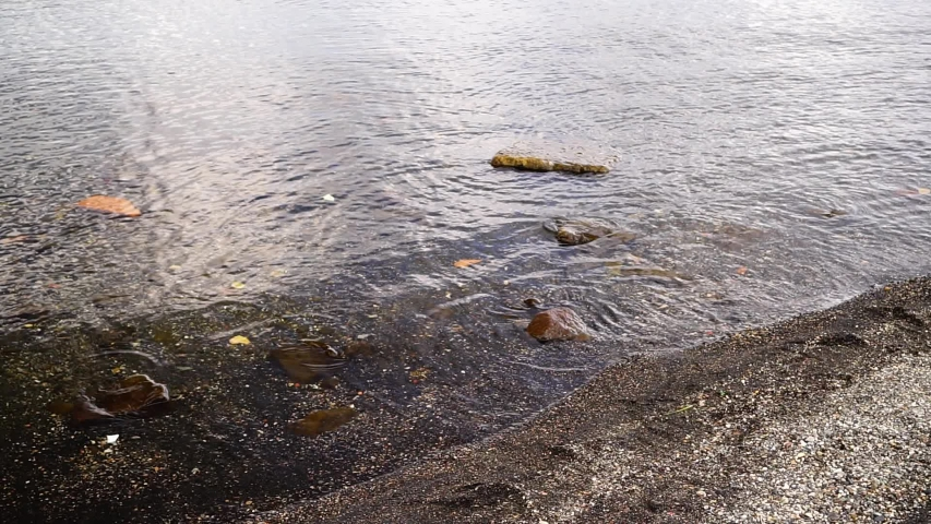 View of a lake from the shore with waves and small rocks on a cloudy day. copy space | Shutterstock HD Video #1053507887