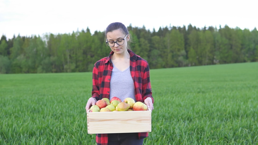 Woman farmer holding wooden box with fruits and goes across the field, slow motion | Shutterstock HD Video #1053507896