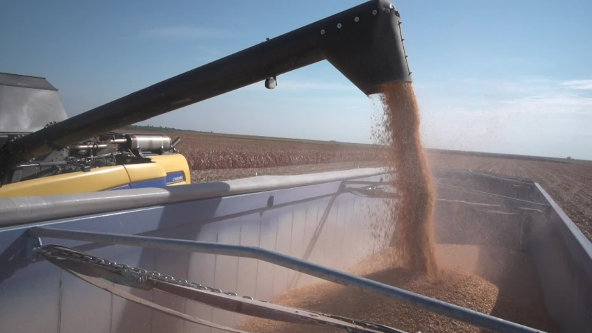 Corn harvest on agriculture machine | Shutterstock HD Video #1053533774