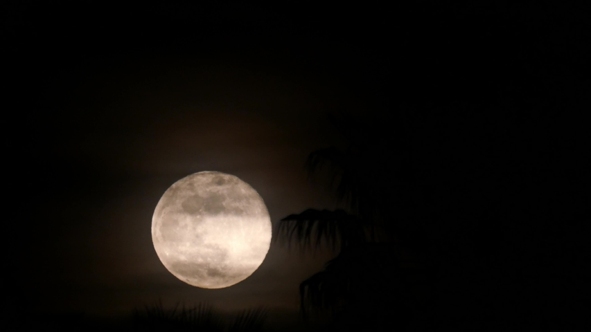 Night time lapse of full moon rising up at Las Vegas, Nevada   Shutterstock HD Video #1053580055