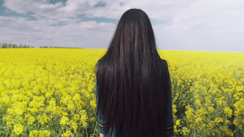 A beautiful brunette girl is walking through a blooming field. Her black hair glistens in the sun. View of the woman from behind.