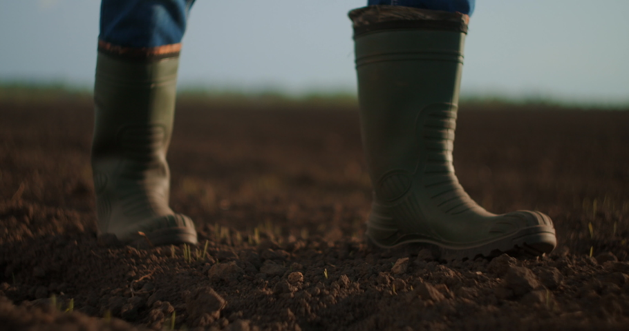 An elderly male farmer in a cap is walking through a newly planted field. Looks at the fresh earth. In slow motion walking on the ground in boots and looking into the distance. Royalty-Free Stock Footage #1053705146