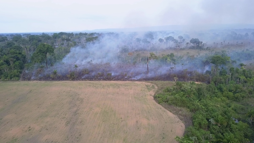 Drone aerial view of Amazon rainforest burning under smoke in sunny day in Para, Brazil. Concept of deforestation, fire, co2, environmental damage and crime in the largest rainforest on the planet. | Shutterstock HD Video #1053735119