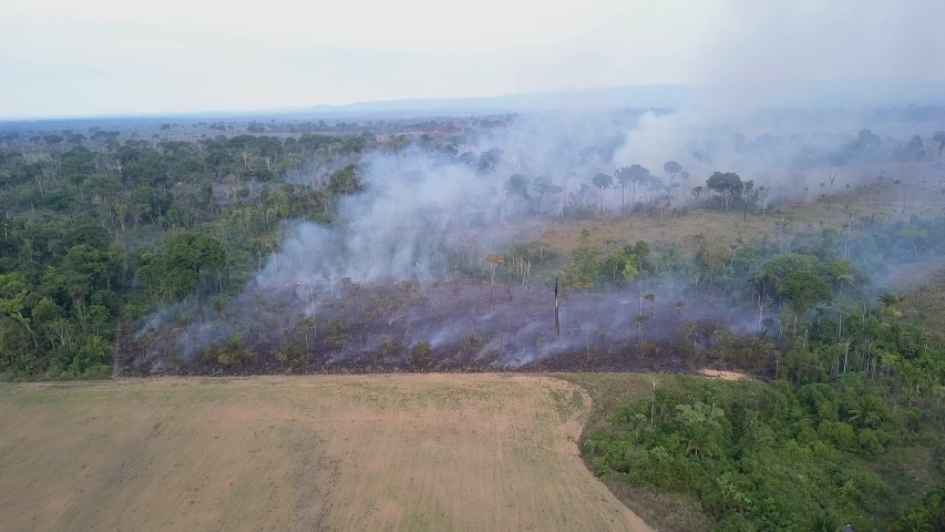 Fire drone aerial view in Amazon rainforest. Forest burning to increase pasture area for cattle and agriculture activities. Deforestation, environment, global warming, co2 and climate change concept. | Shutterstock HD Video #1053735143