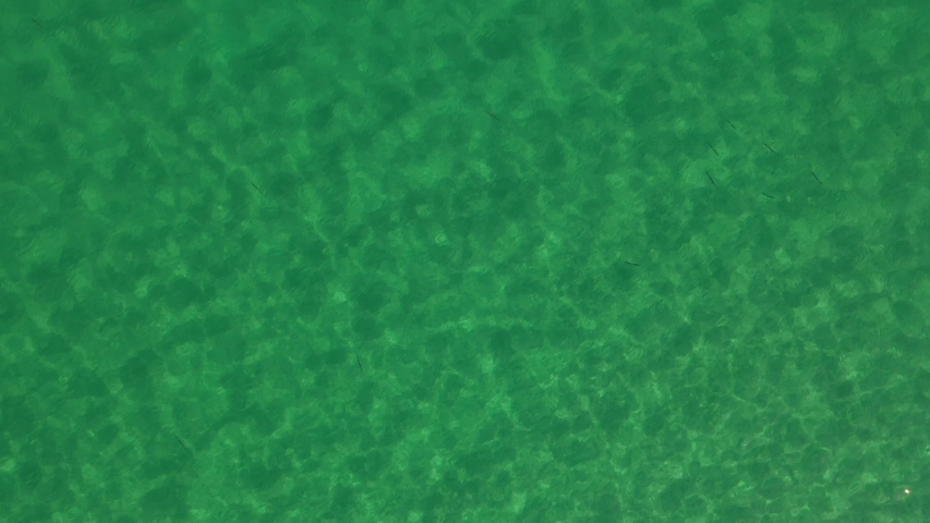 4k. view from above. Azure sea. water reflects sunlight. aquamarine background. clean. clear water | Shutterstock HD Video #1053735815