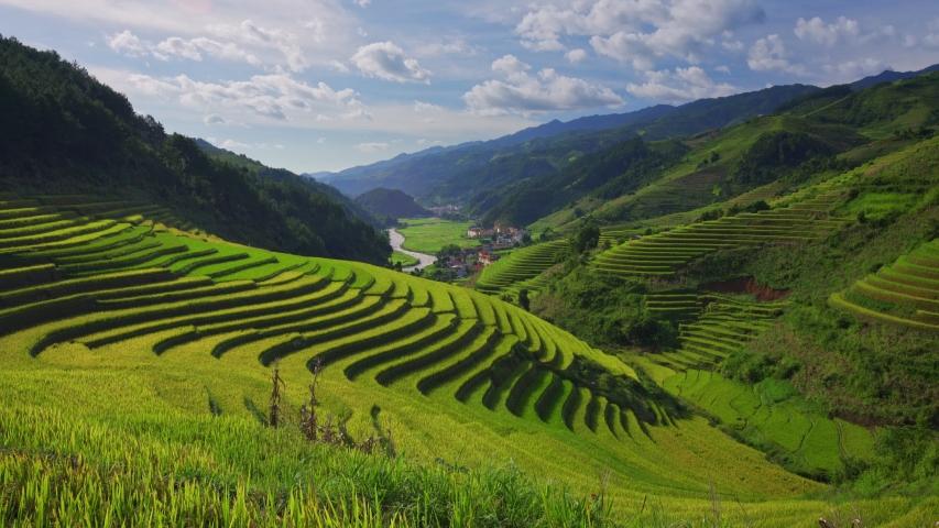 Terraced rice fields in Mu Cang Chai, Yen Bai, Vietnam   Shutterstock HD Video #1053795704