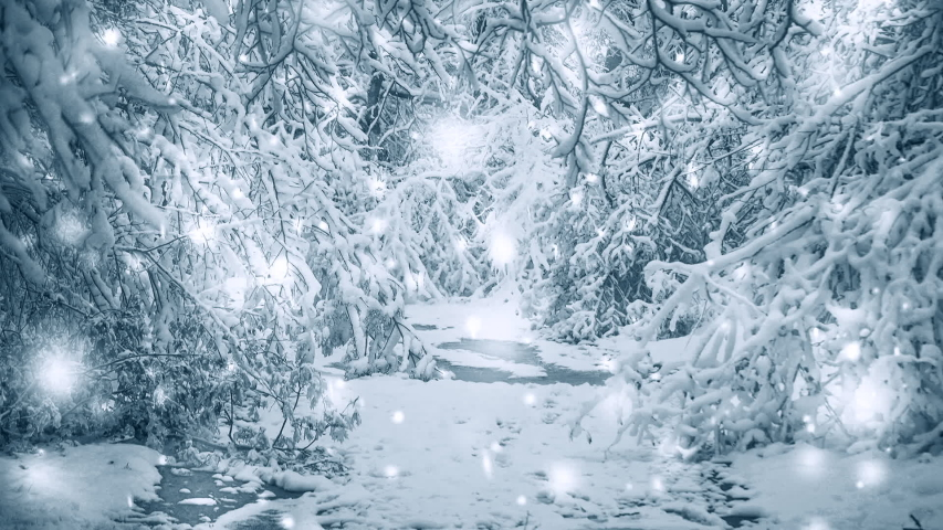 Snow-covered trees plants forest in winter filter, effect. Natural winter Christmas New Year. Woodland snow under. Cinemagraph seamless loop animation motion gif render background. White blue color   Shutterstock HD Video #1053803345