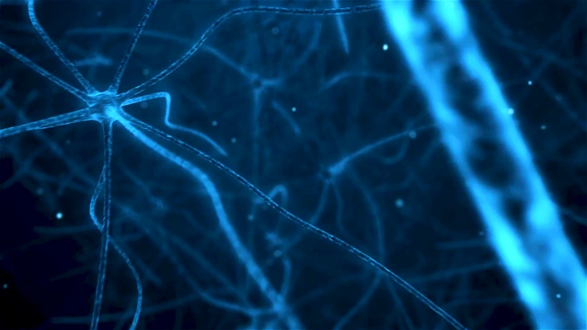 Neuronal and Synapse Activity animation. Neurons in the head, neuroactivity, synapses, neurotransmitters, brain, axons. Electrical impulses inside the human brain. | Shutterstock HD Video #1053835511