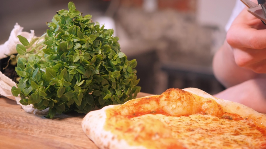 Chef cuts fresh herb greens pinch with scissors and pours on baked Italian pizza with crispy crust extreme close view | Shutterstock HD Video #1053902276