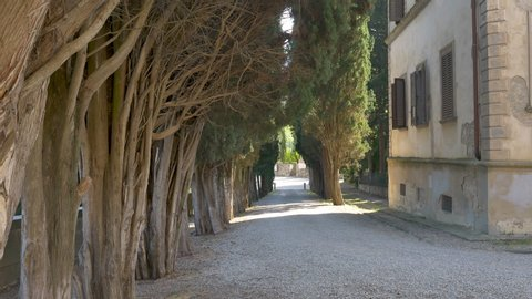 Badia a Passignano, Florence, Italy - 2020, June 2: The driveway of the historic Abbey of San Michele Arcangelo a Passignano, with centuries-old cypresses.