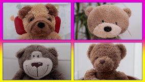 video of teddy bear soft toys in online virtual remote meeting, could be business or casual friends chat.