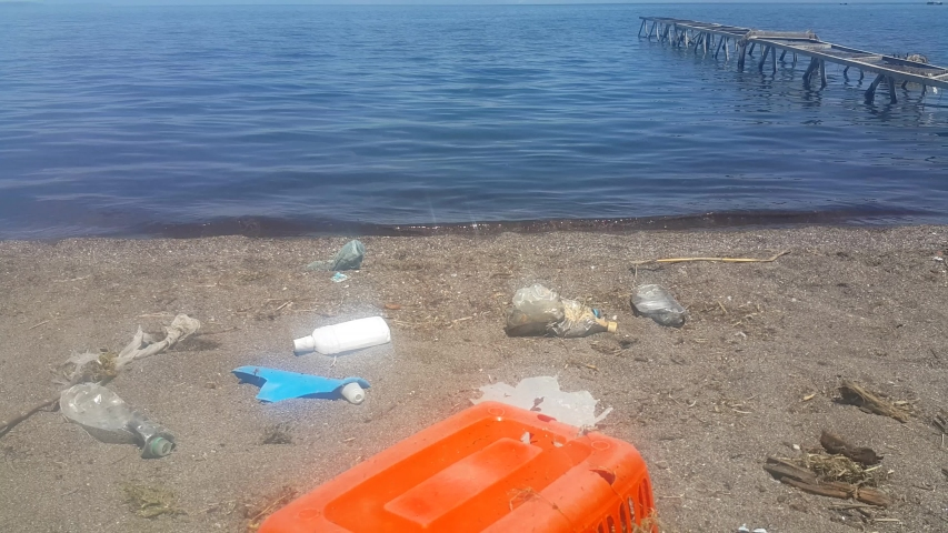 A polluted beach with plastic bottles and a crate. Garbage on the beach. Environmental pollution. Marine debris. Concept for the protection of marine mammals and fish. | Shutterstock HD Video #1054085966