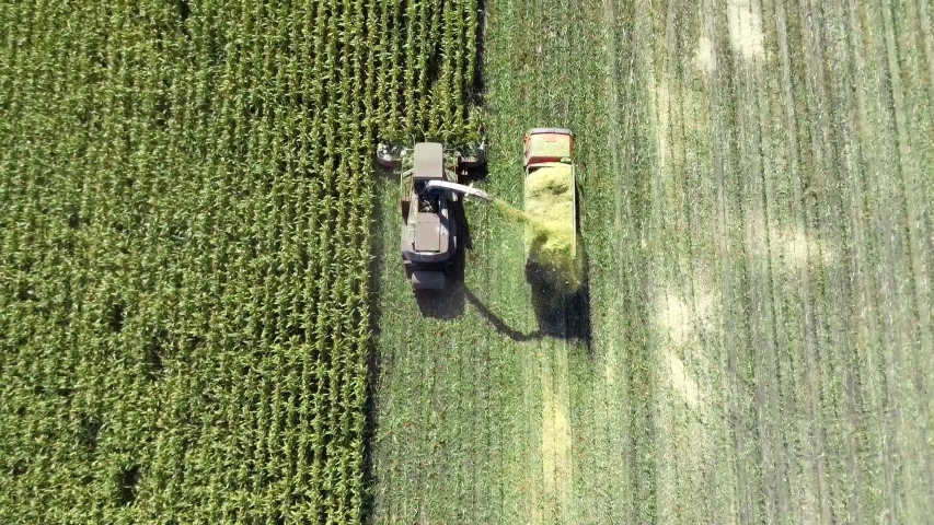 Aerial shot of harvester loading off corn on trailers. Aerial shot of modern harvester loading off corn on tractor trailers. Concept of: Tractor, Harvest, Drone, Eco.
