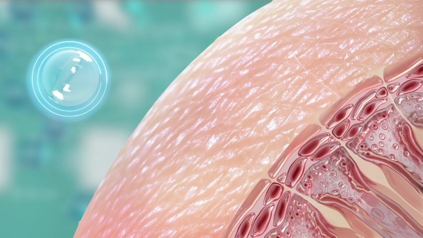 Show the combination of vitamins in skin nourishment that protects the face 3d Royalty-Free Stock Footage #1054211537