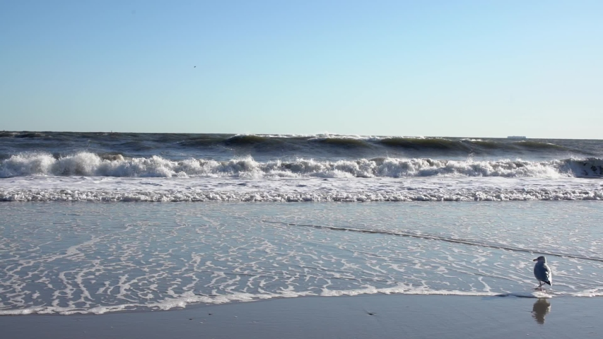 Slow Motion Waves on Rockaway Beach in New York City. Sunny Empty Beach in NYC