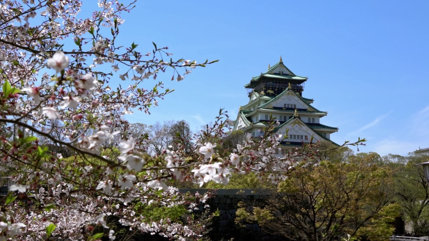 4K, Tower of Osaka Japanese Castle behind rock wall with sakura blossom Nishinomaru Garden, famous landmarks in Japan. Beautiful scene of old heritage building at spring season with cherry blossom | Shutterstock HD Video #1054252787