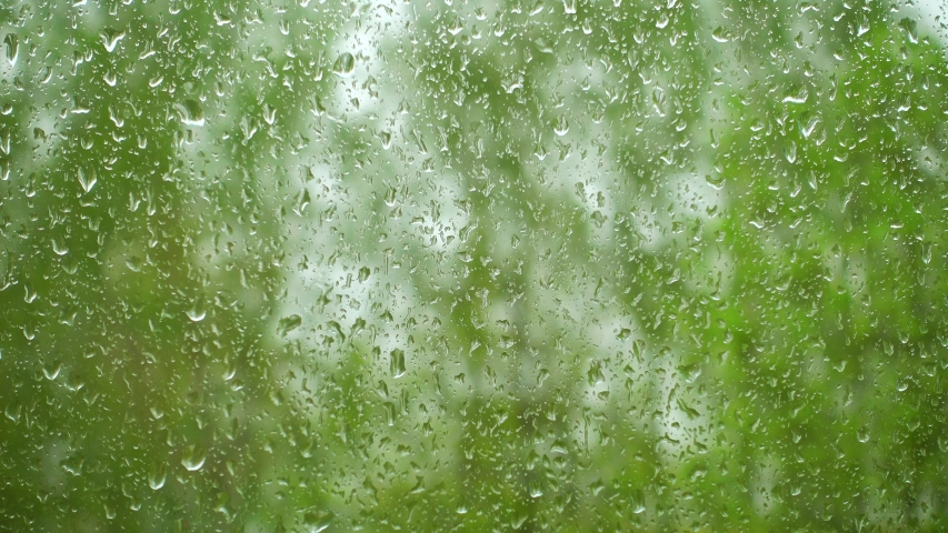 Raindrops on a window and green trees outside the window. Abstract view of rain drops a window. 4k video with rain sound.