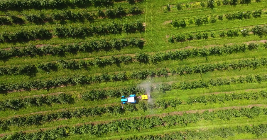 The tractor sprays apple orchards | Shutterstock HD Video #1054294577