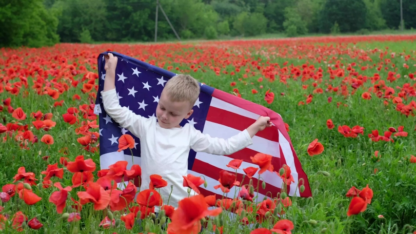 Boy swinging with american flag in poppy field.Concept of Memorial day or Veteran's day in America.