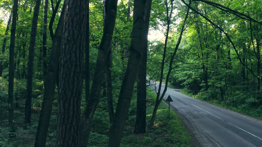 Aerial view forest road with car moving green trees. Car driving the forest road. Sunlight on the summer day. | Shutterstock HD Video #1054335701