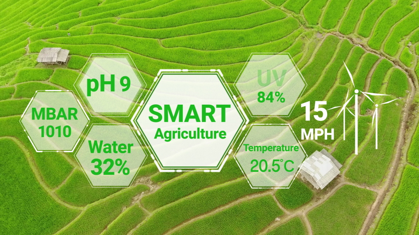 Smart digital agriculture technology by futuristic sensor data collection management by artificial intelligence to control quality of crop growth and harvest. Computer aided plantation grow concept. Royalty-Free Stock Footage #1054336370