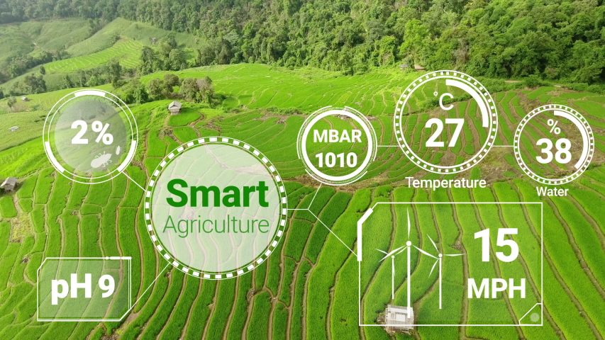 Smart digital agriculture technology by futuristic sensor data collection management by artificial intelligence to control quality of crop growth and harvest. Computer aided plantation grow concept. Royalty-Free Stock Footage #1054336373