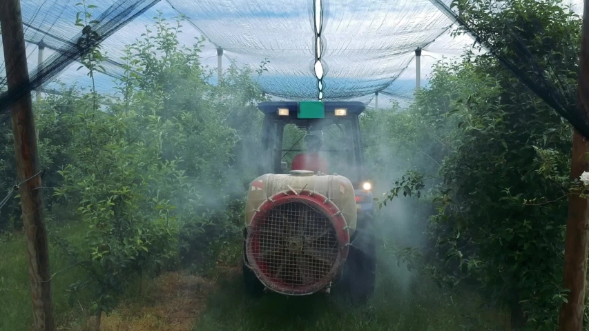 Tractor Sprays Pesticides in Apple Orchard Covered with Hail Protection Netting. Farmer Driving Tractor Through Orchard in Springtime. Royalty-Free Stock Footage #1054367357