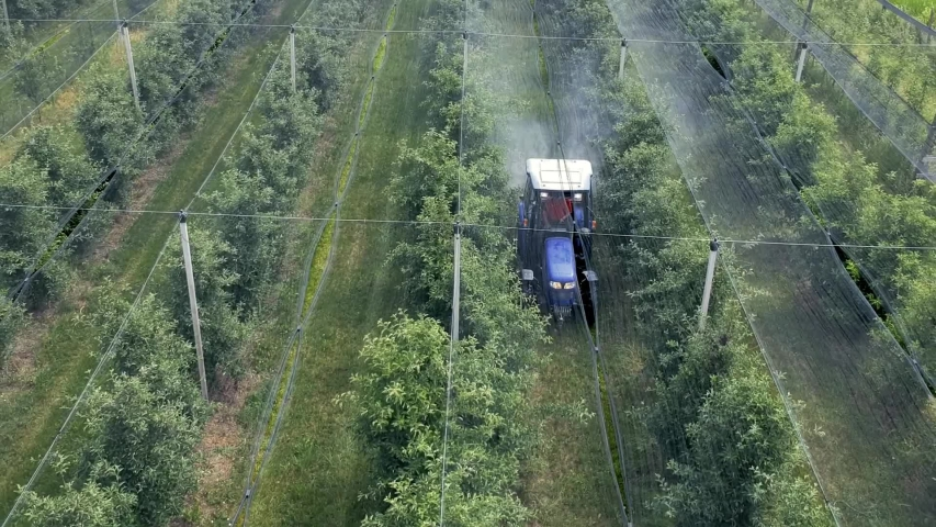Drone Aerial Footage of Tractor Spraying Orchard Covered with Hail Protection Nets  in Springtime. Farmer Driving Tractor Through Apple Orchard. | Shutterstock HD Video #1054367360