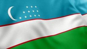 A beautiful view of Uzbekistan flag video. 3d flag waving video. Uzbekistan flag HD resolution. Uzbekistan flag Closeup 1080p Full HD video.