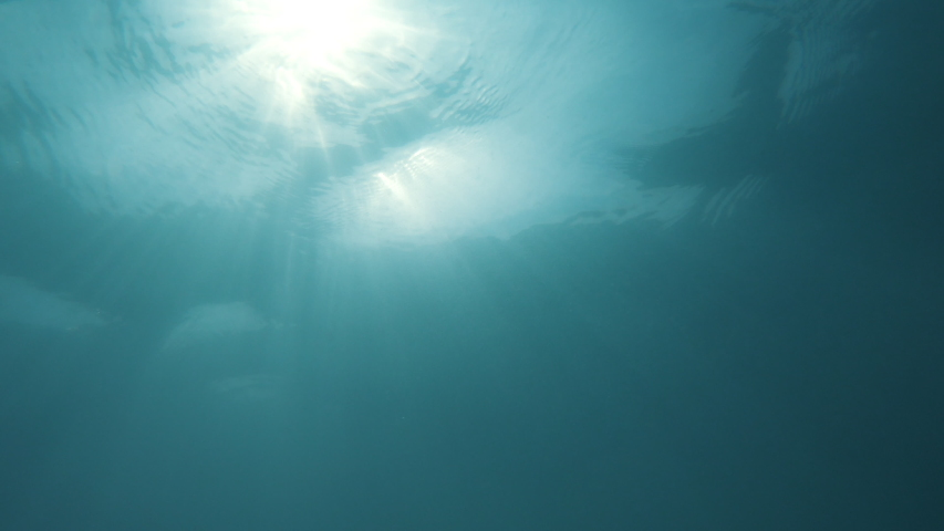 Sun Light Rays through under water's glittering. Natural slow motion underwater scene  | Shutterstock HD Video #1054395182