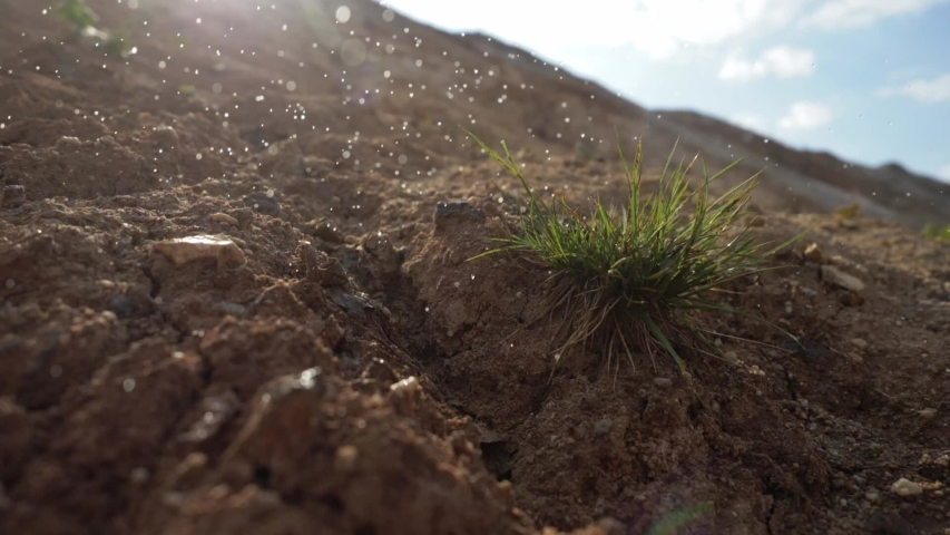 Global warming concept. Lonely plant at drought cracked desert landscape. Lack of water, deforestation. Raining in desert. Climate change, drought, environment | Shutterstock HD Video #1054408199
