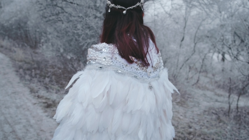 Closeup portrait beautiful sexy woman in white carnival wedding vintage medieval creative cape cloak. Sparkling gems rhinestones. Swan bird feathers. Brunette loose hair. Winter frosty forest backdrop