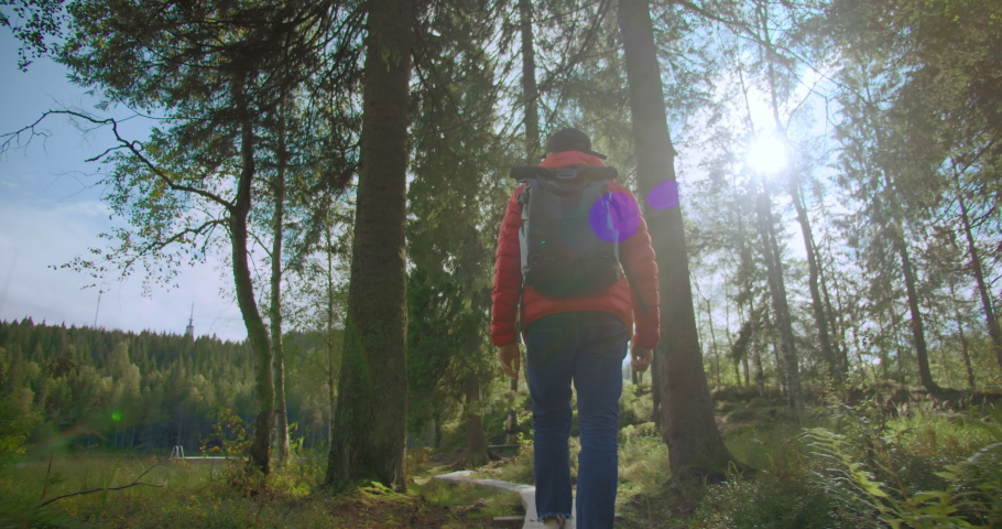 Inspiring wanderlust motivational shot of travel blogger or influencer walk in forest. Man hiking or camping in wilderness walk on path or trail. Sun flares between pine trees. Outdoors lifestyle Royalty-Free Stock Footage #1054428080