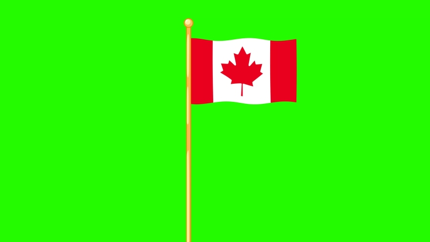 Cartoon seamless waving  4k Canadian Flag. Green screen.  | Shutterstock HD Video #1054538771