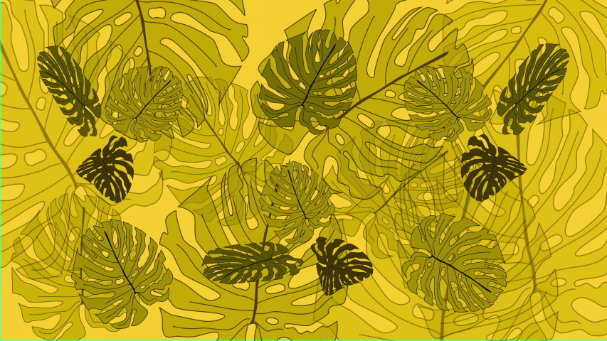 Light colourful yellow green background with beautiful monstera plant leaves. Animation. VJ clip, banner billboard funny seamless background. | Shutterstock HD Video #1054680266