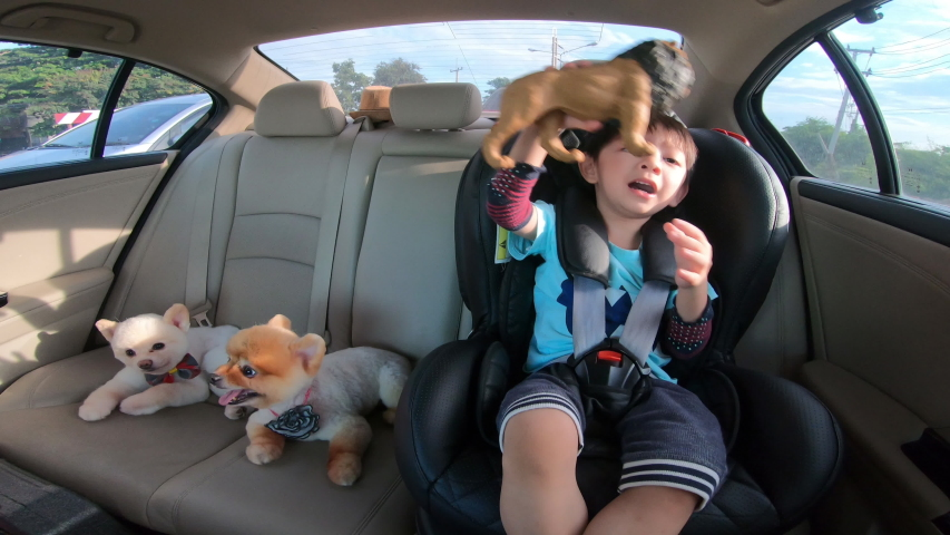 Cute boy and adorable pomeranian dog sitting in car driving road trips | Shutterstock HD Video #1054685756