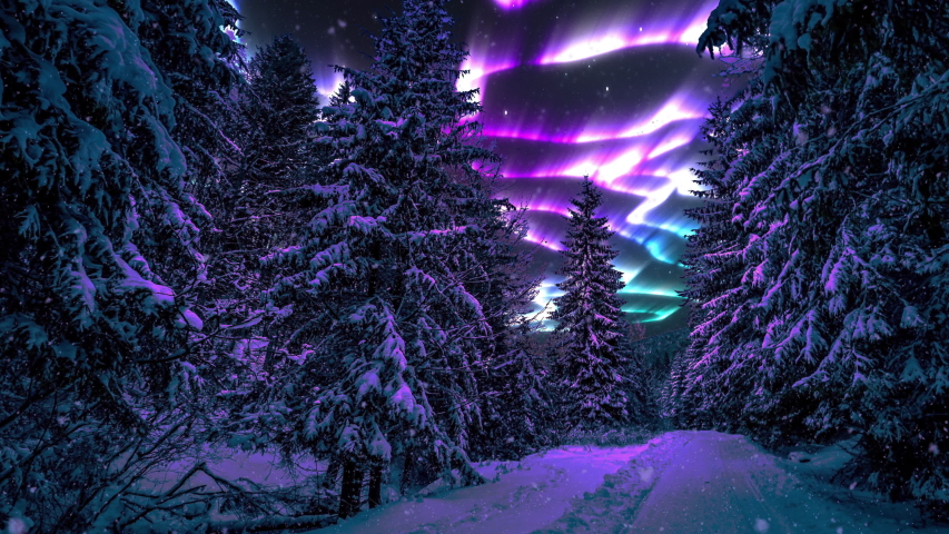 4K Northern lights Polar Aurora Borealis. Winter snowfall over a northern forest. Falling snow video overlay image of path trail road through night forest woods in winter. Winter animated postcard