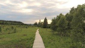 Wooden path through the grass