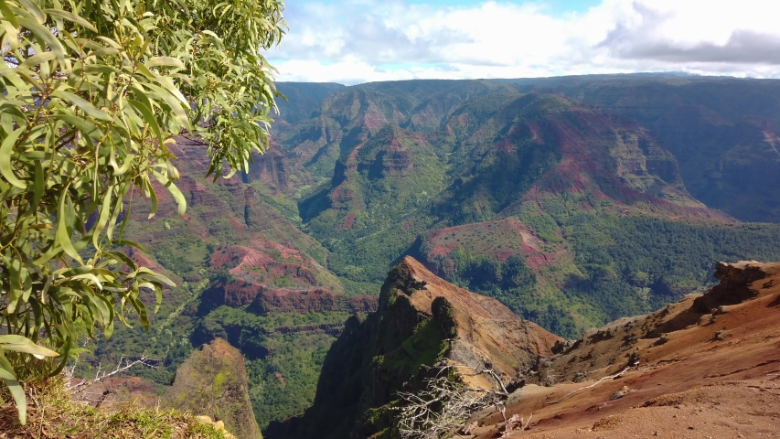 4K Hawaii Kauai boom up and pan left to right of Waimea Canyon with a tree frame left to Waimea Canyon with tourists on a lookout point frame right with a bright partly cloudy sky | Shutterstock HD Video #1054699898