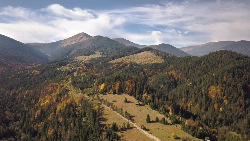 Aerial view of autumn mountain landscape with evergreen pine trees and yellow fall forest with magestic mountains in distance. | Shutterstock HD Video #1054703723