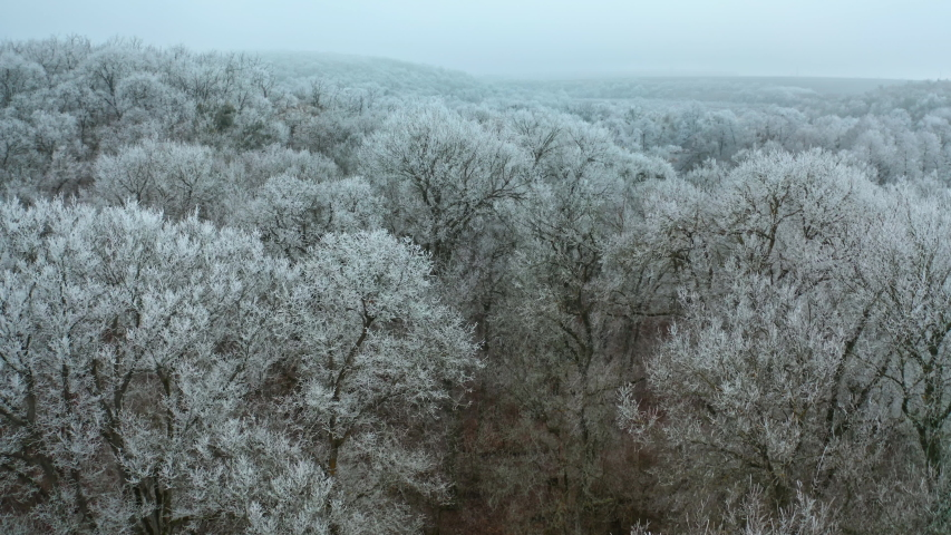 Amazing winter landscape. Flying over the forest with white trees covered with hoar frost. Aerial view. | Shutterstock HD Video #1054706816
