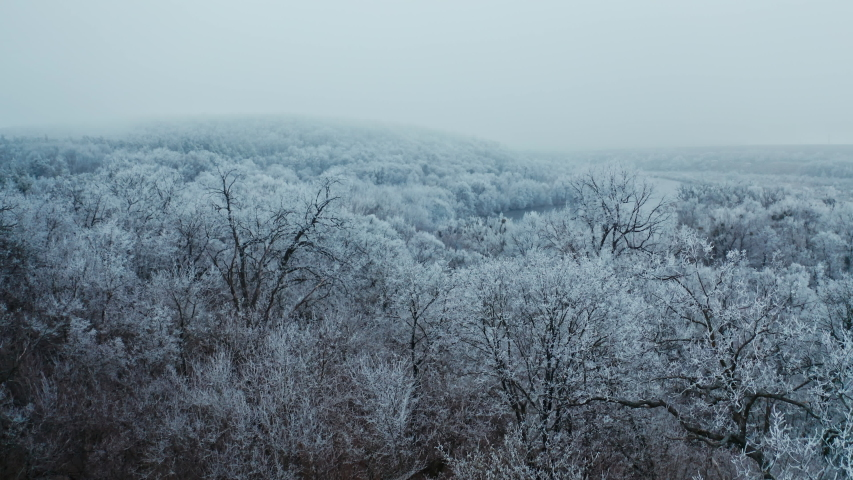 Nature in winter. White trees in snow frost. Panoramic view of nature landscape in winter season. Beautiful river in the forest. Aerial view. | Shutterstock HD Video #1054706819