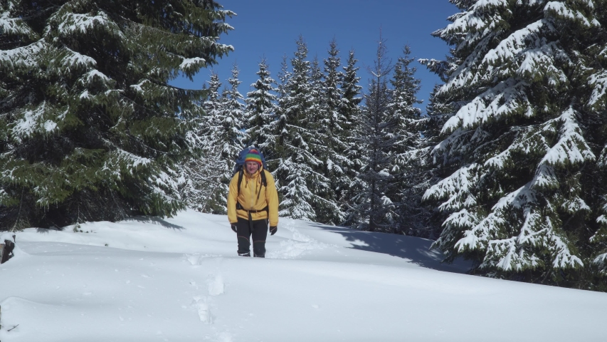 Winter sports and recreation hiking concept. A man with a backpack walks in the winter forest. Carpathian mountain range. 4K | Shutterstock HD Video #1054722410