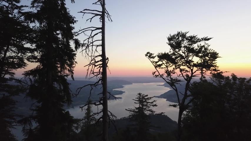 Drone fly through Trees - reveal Austrian Lake - Sunrise   Shutterstock HD Video #1054725971