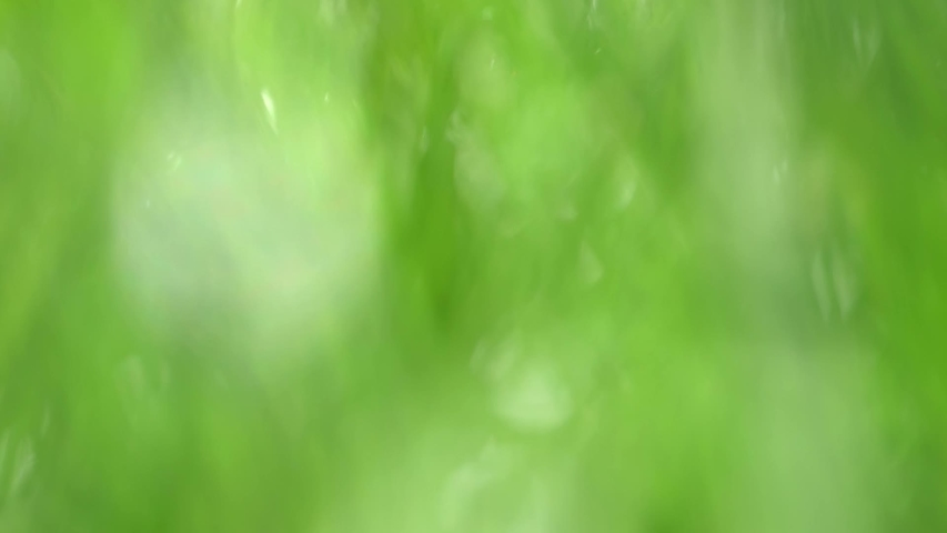 Beautiful green natural floral video bokeh abstract background   Shutterstock HD Video #1054727294