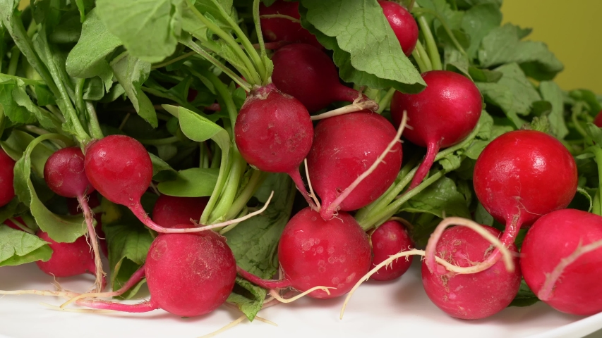 Closeup view 4k video footage of many riped red radishes isolated o white background. Healthy organic vegetables from farmer of eco farm. | Shutterstock HD Video #1054727954