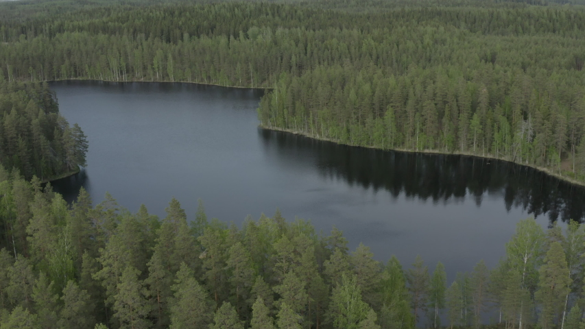 Flying above curved lake surrounded by green forest.
